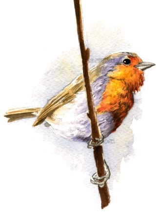 Bird perched on a branch