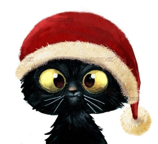 Happy cat with christmas hat