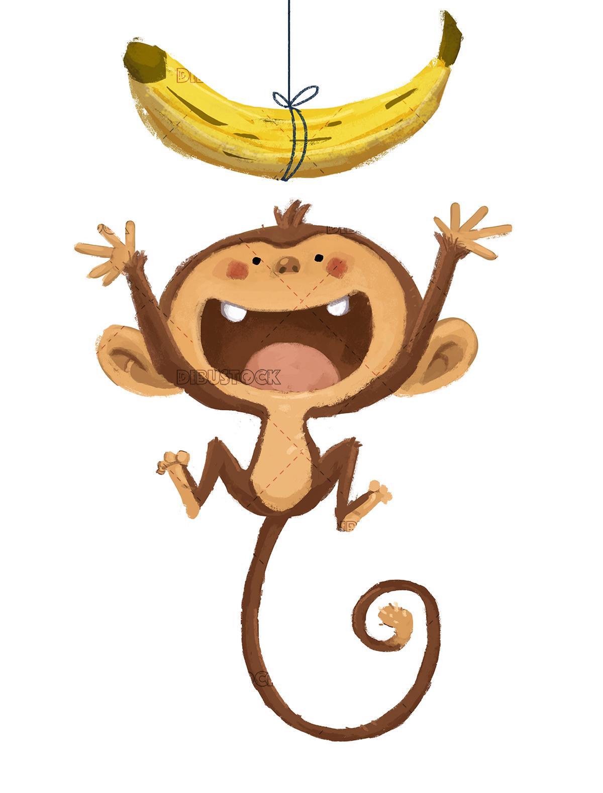 Monkey jumping white background