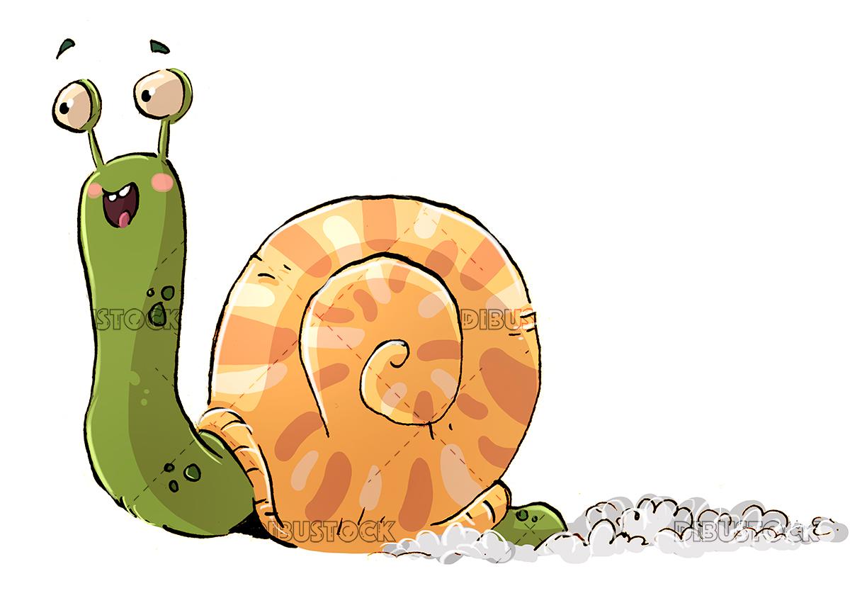 happy snail h