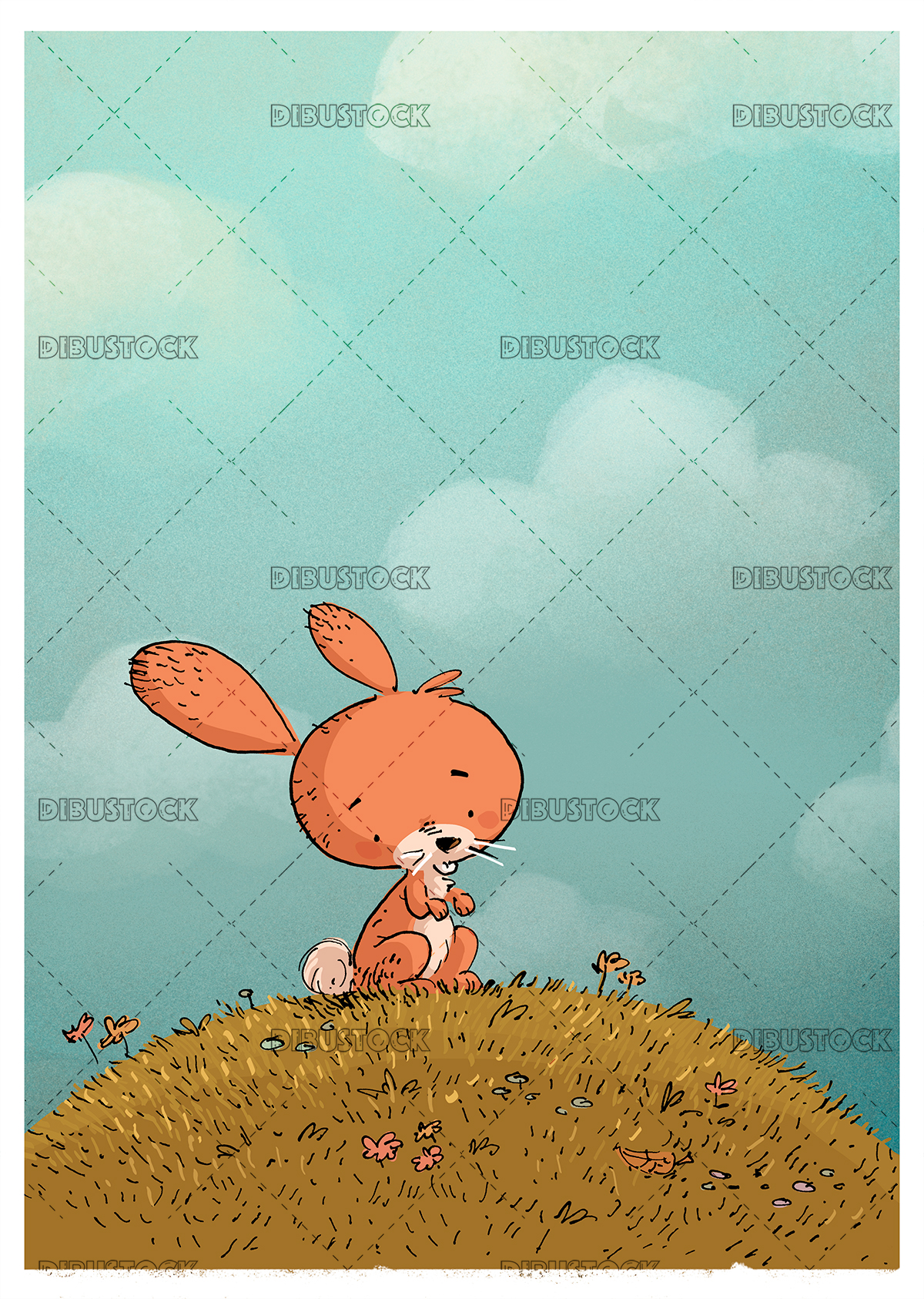rabbit in the field