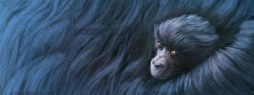 Baby gorilla hugged