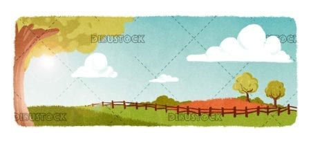 Field or meadow background in spring or summer