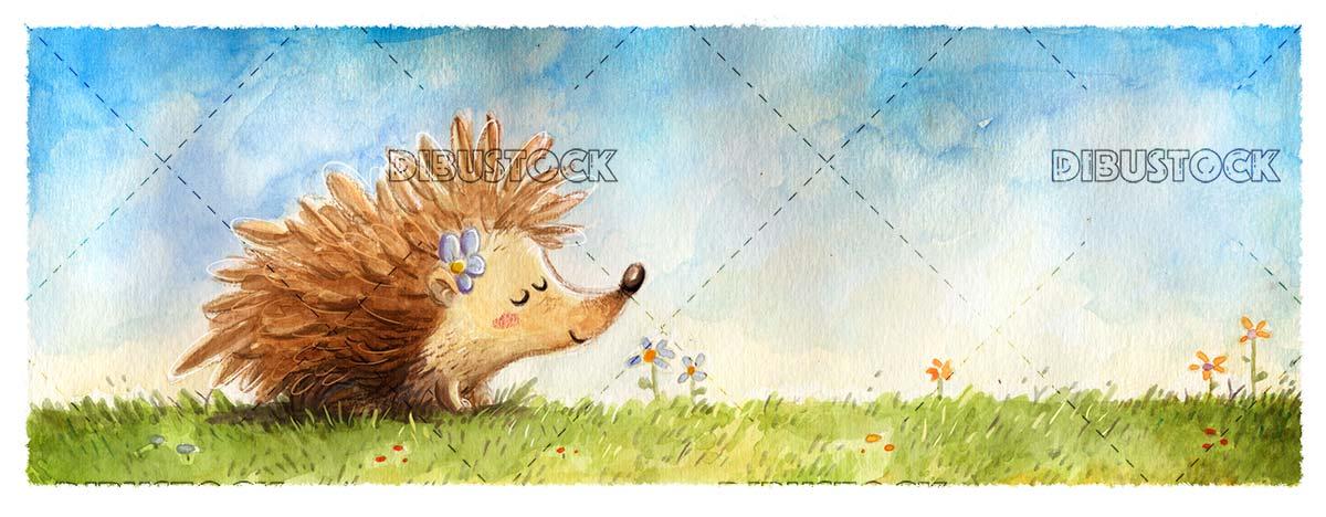 Hedgehog in the field