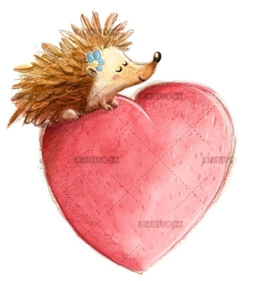 Hedgehog with heart