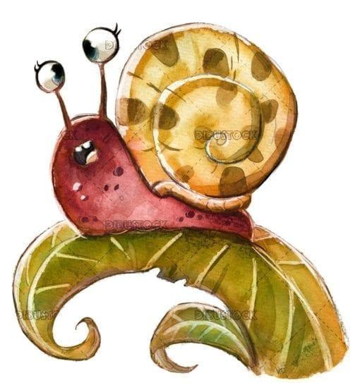 Wild snail