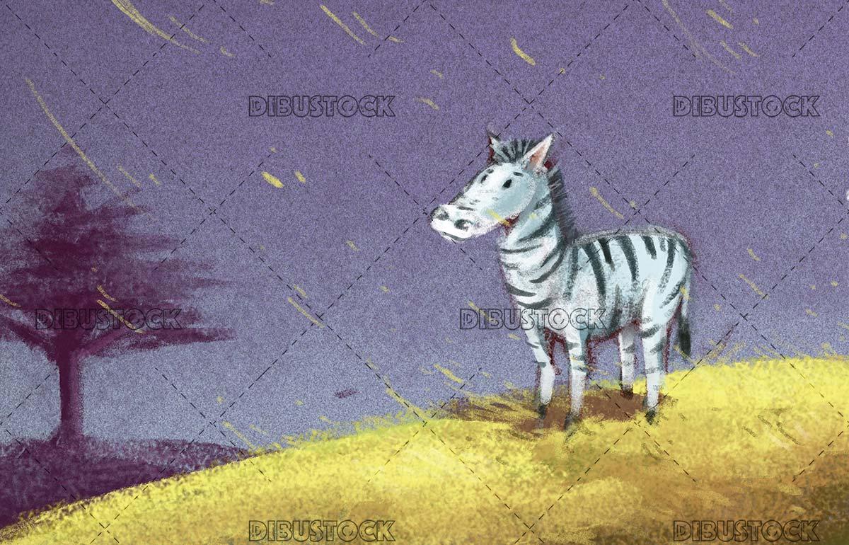 zebra in the savannah while it rains