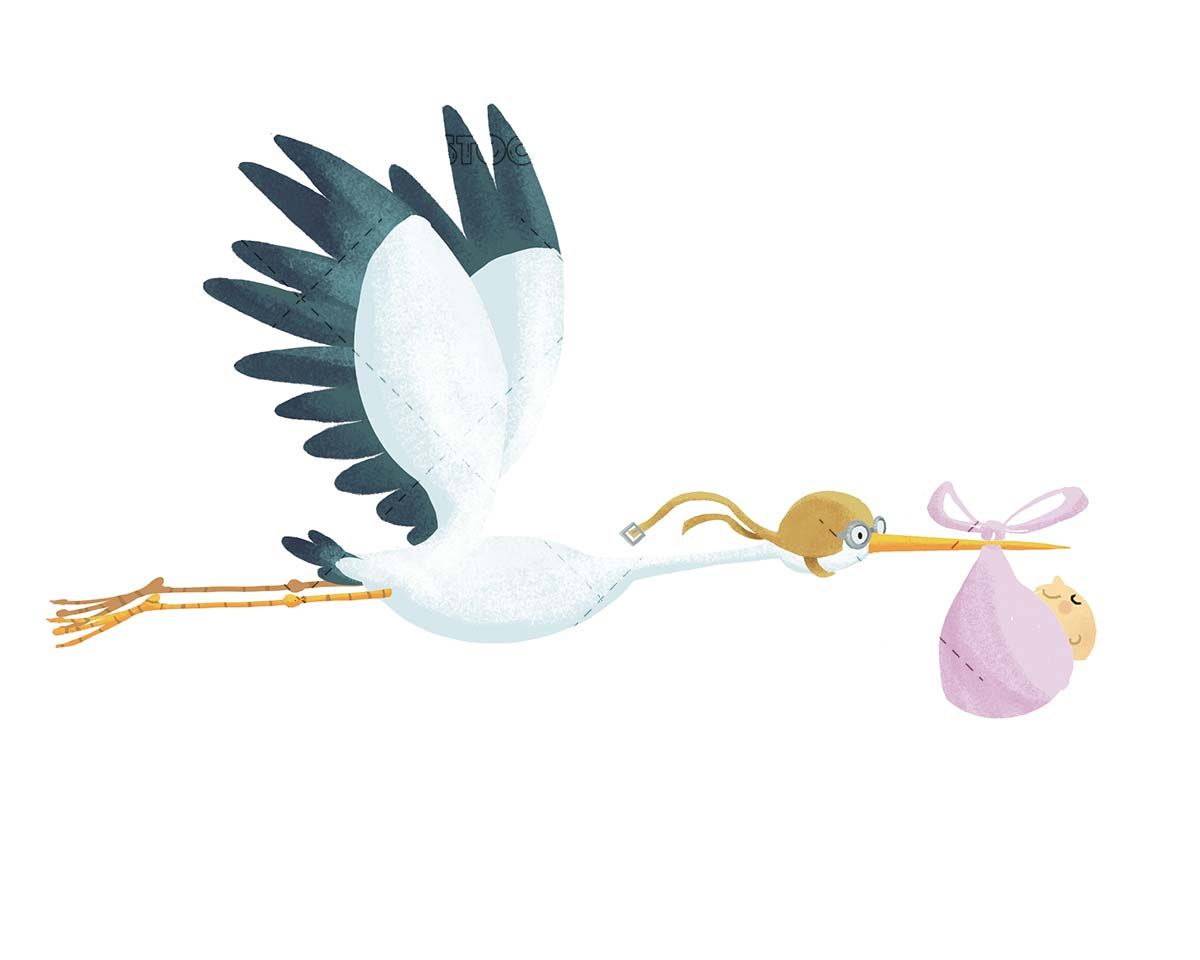 aviator stork carrying a baby on isolated background