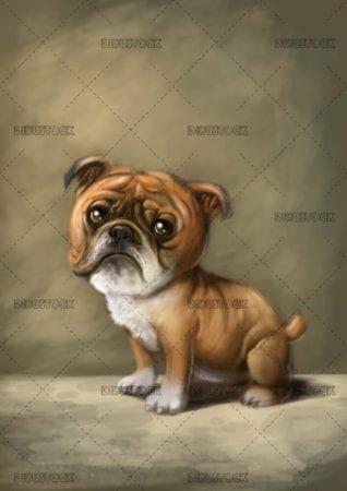 background texture bulldog dog