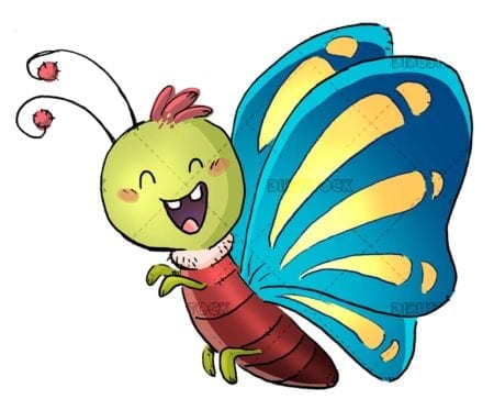 funny butterfly insect isolated