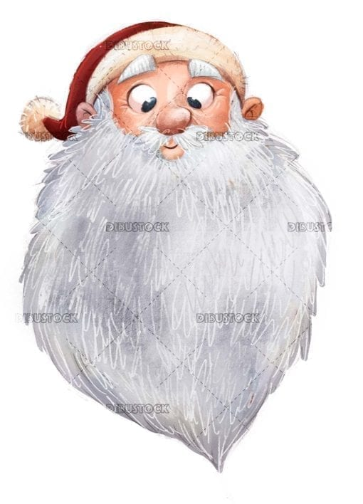 funny face of santa claus isolated
