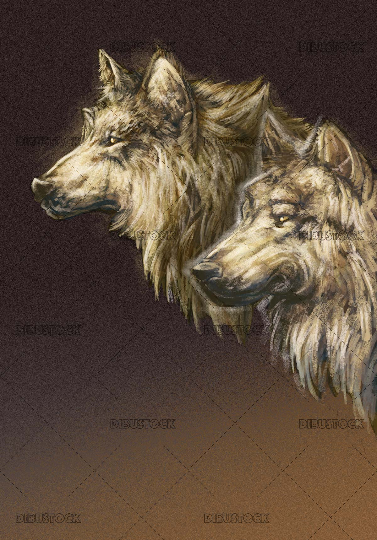 faces of two wild wolves
