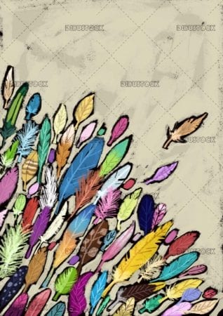 feathers of many colors and shapes