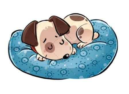 funny dog sleeping on cushion