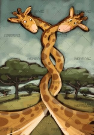 giraffes in the savanna with rolled neck