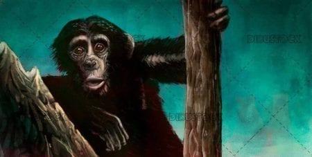 illustration of small chimpanzee on green background