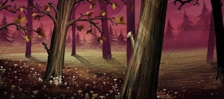 magic forest interior