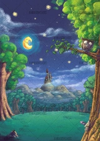 night landscape with owl and castle in background