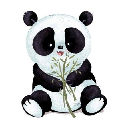 panda bear breeding on isolated background