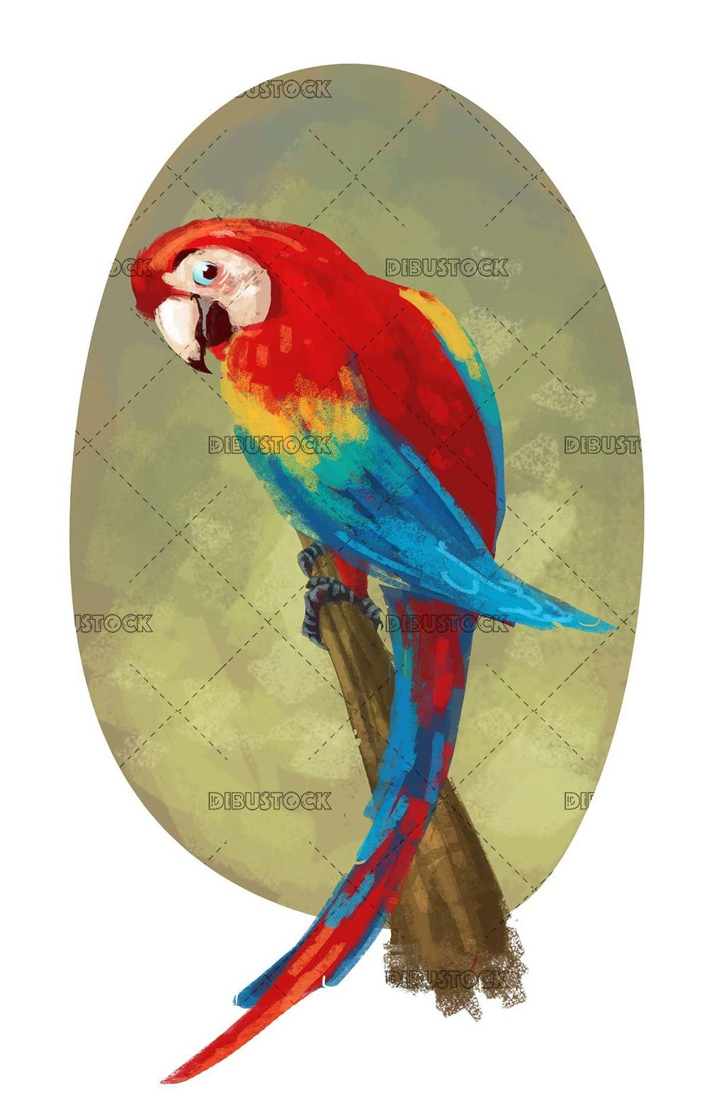 parrot with texture background