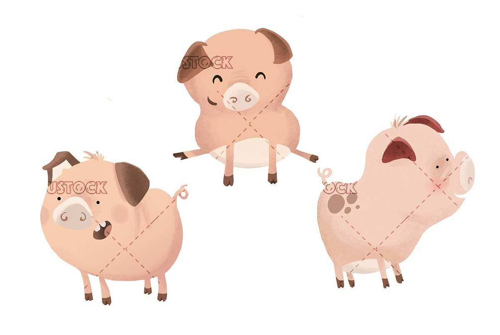pigs in different steps