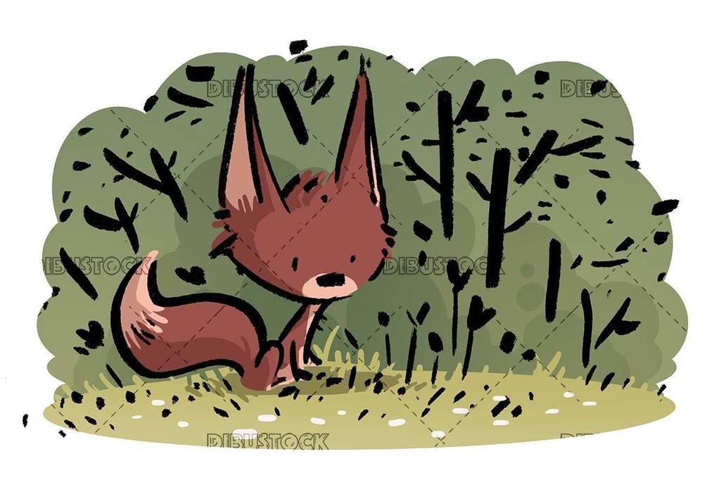 red fox breeding in the field