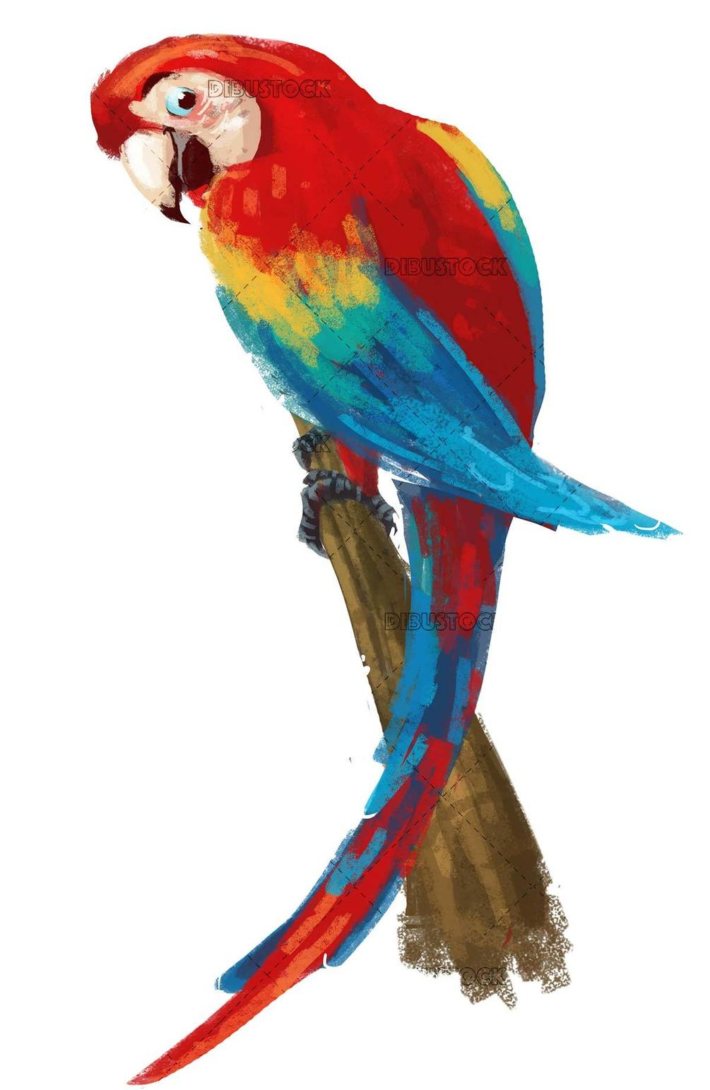 red parrot on blue background