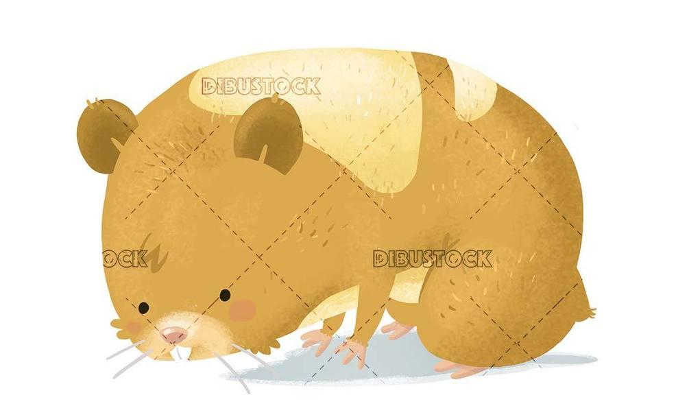 small hamster