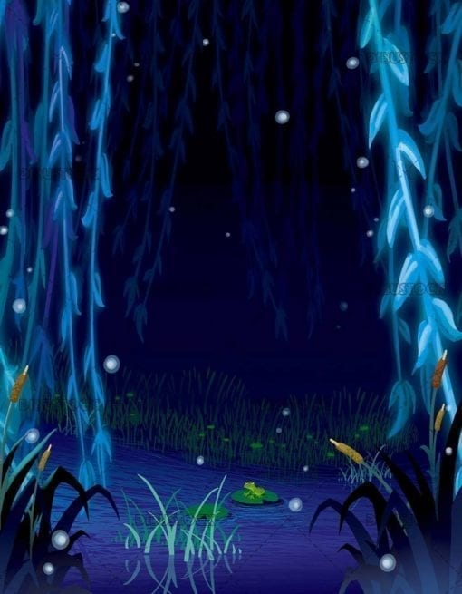swamp at night
