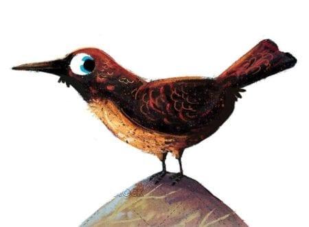 textured bird on isolated background