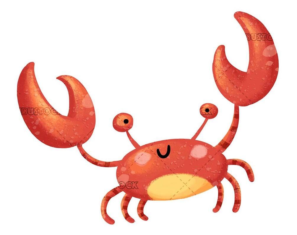 textured orange crab