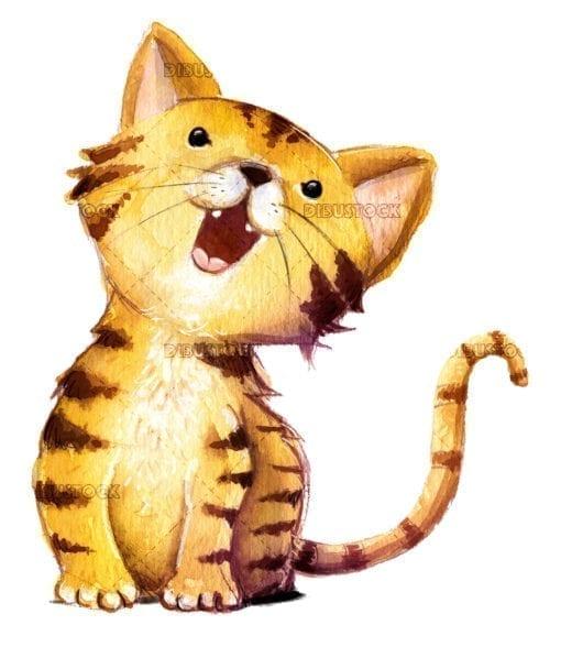 orange cat in funny pose