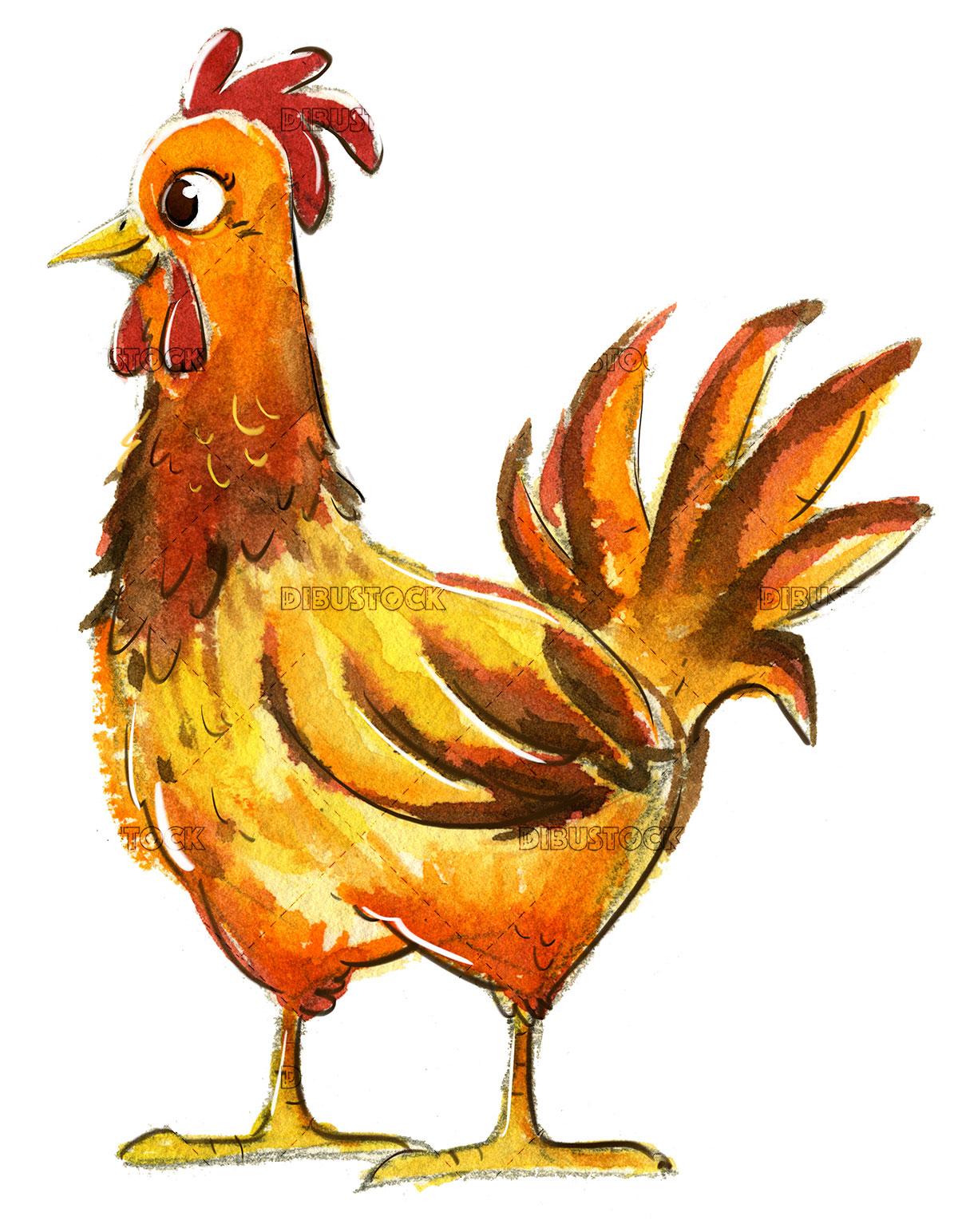 orange hen in watercolor