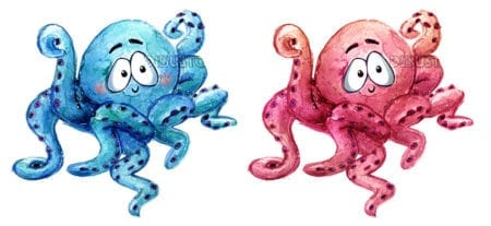 pink and blue childrens octopus