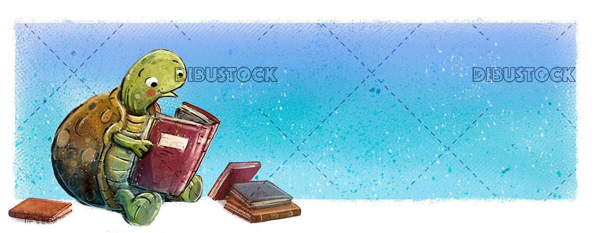 tortuga libro fondo