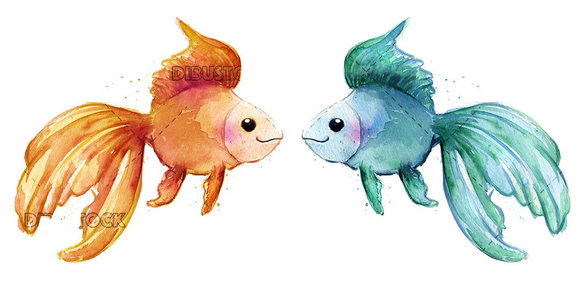 Blue and orange tropical fish