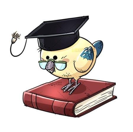 bird with cap on top of book