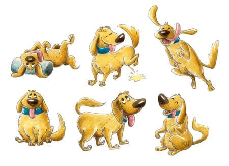 brown dog in different postures