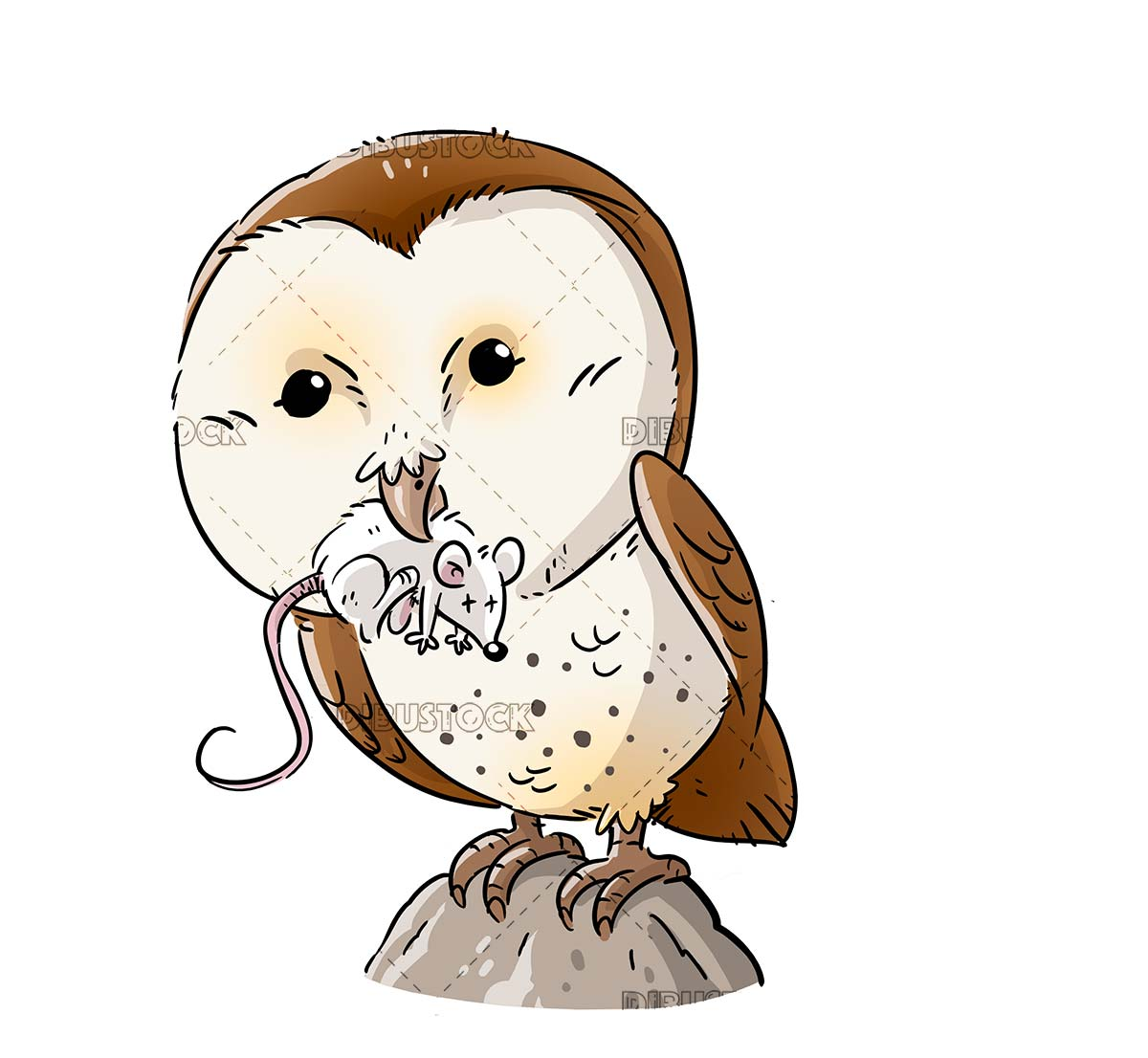 Barn owl hunting a mouse