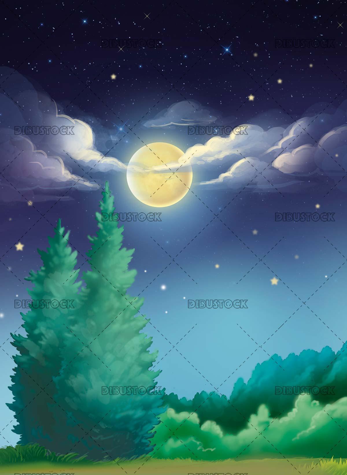 Night field background