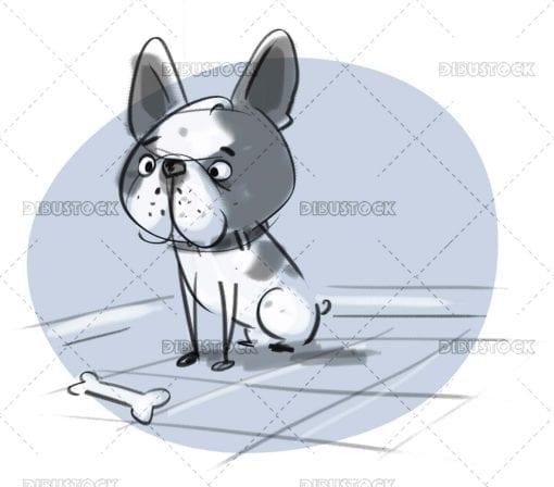 Gray bulldog with collar facing a bone