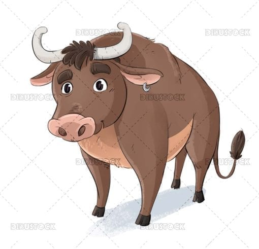 Brown bull baby