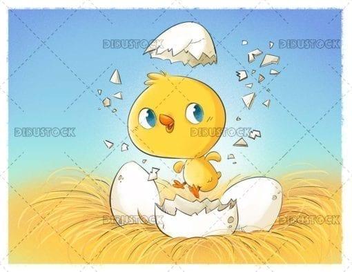 Farm Chick Hatching