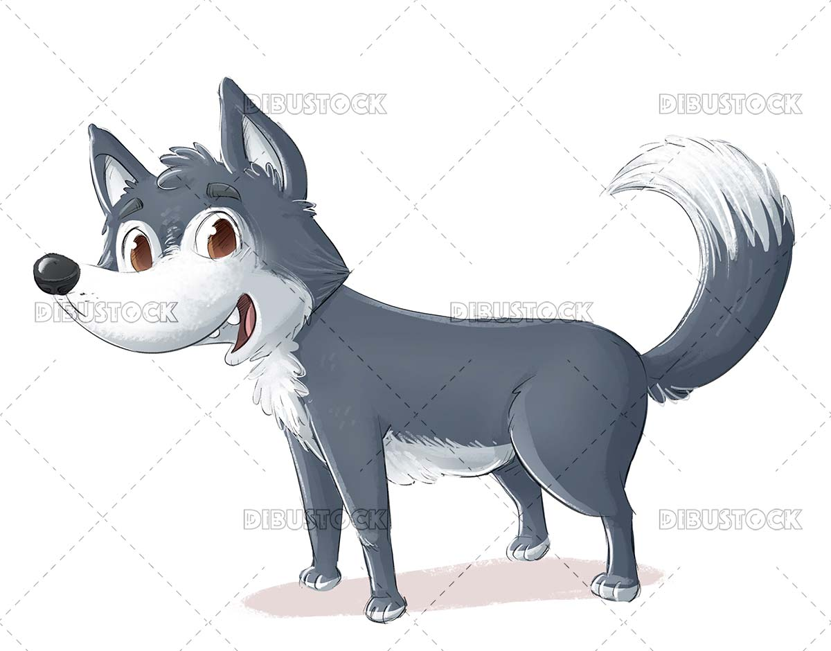 Funny gray wolf