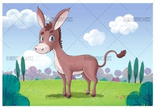 Gray donkey in the field