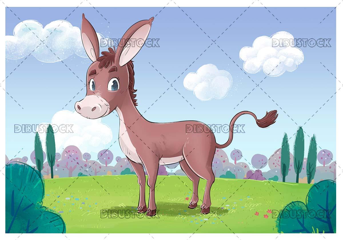 Gray donkey in the field
