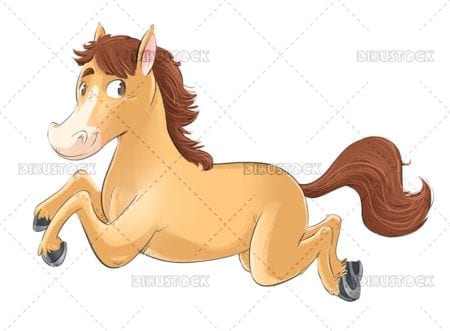 Horse running and jumping