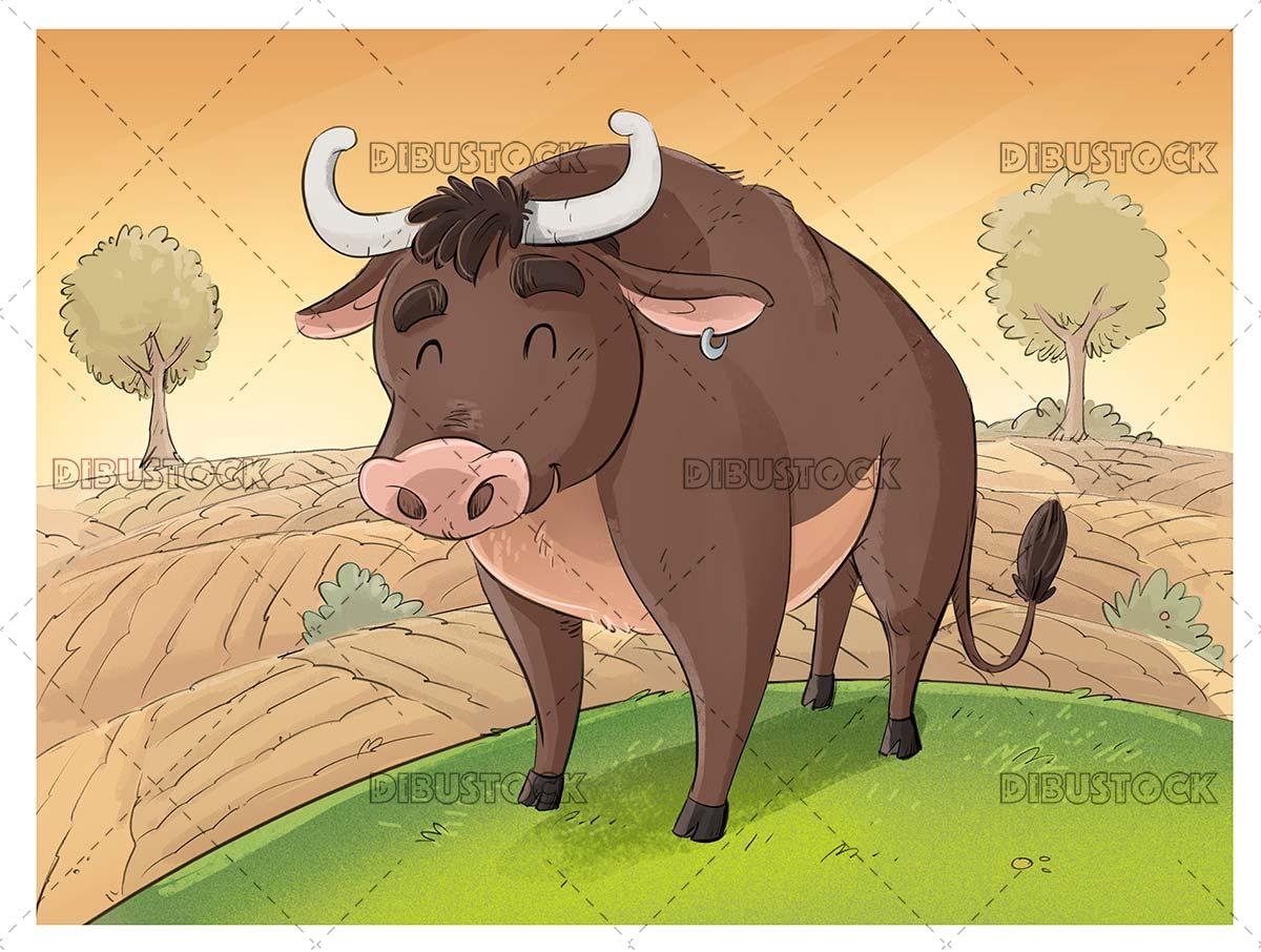 Funny bull in the field