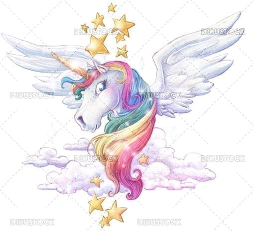 Magic rainbow unicorn