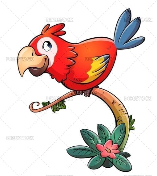 Red parrot on branch